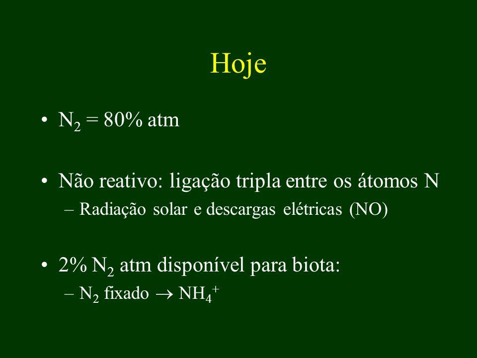 Hoje N2 = 80% atm Não reativo: ligação tripla entre os átomos N