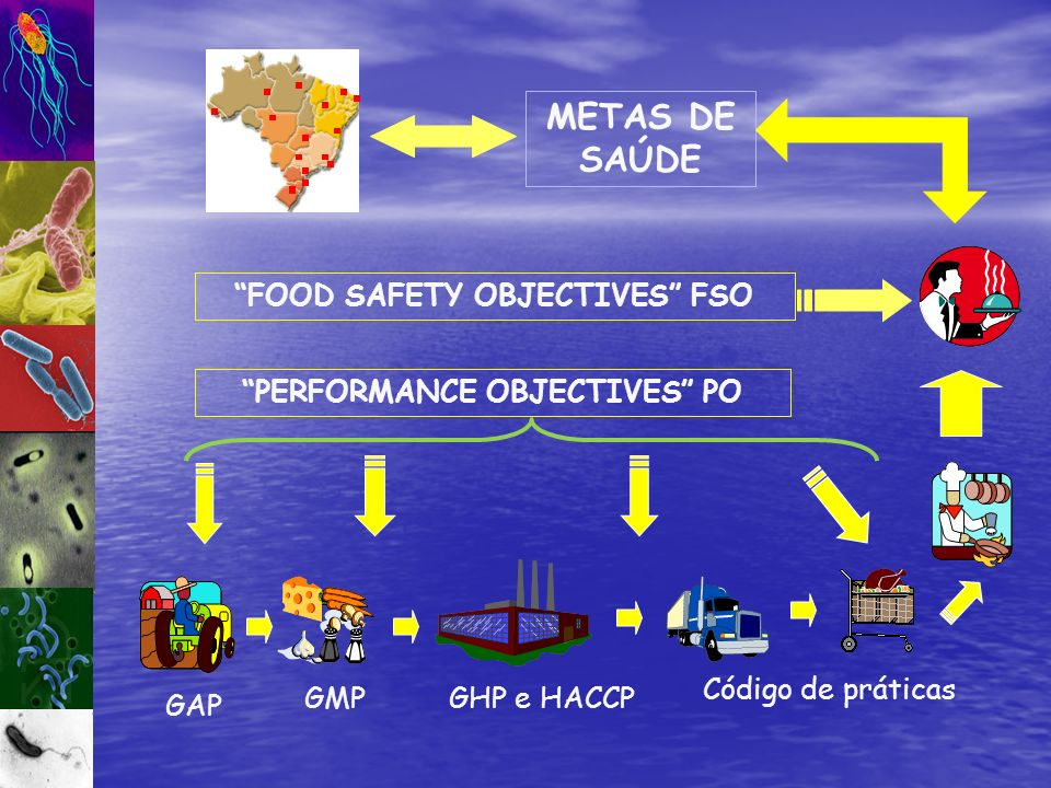 FOOD SAFETY OBJECTIVES FSO PERFORMANCE OBJECTIVES PO