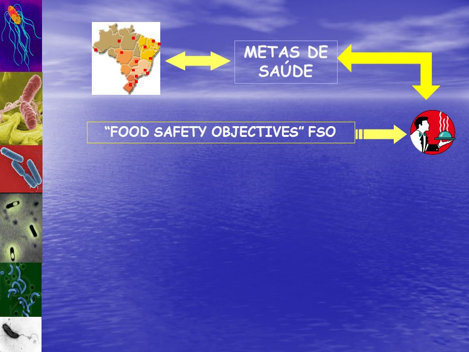 FOOD SAFETY OBJECTIVES FSO