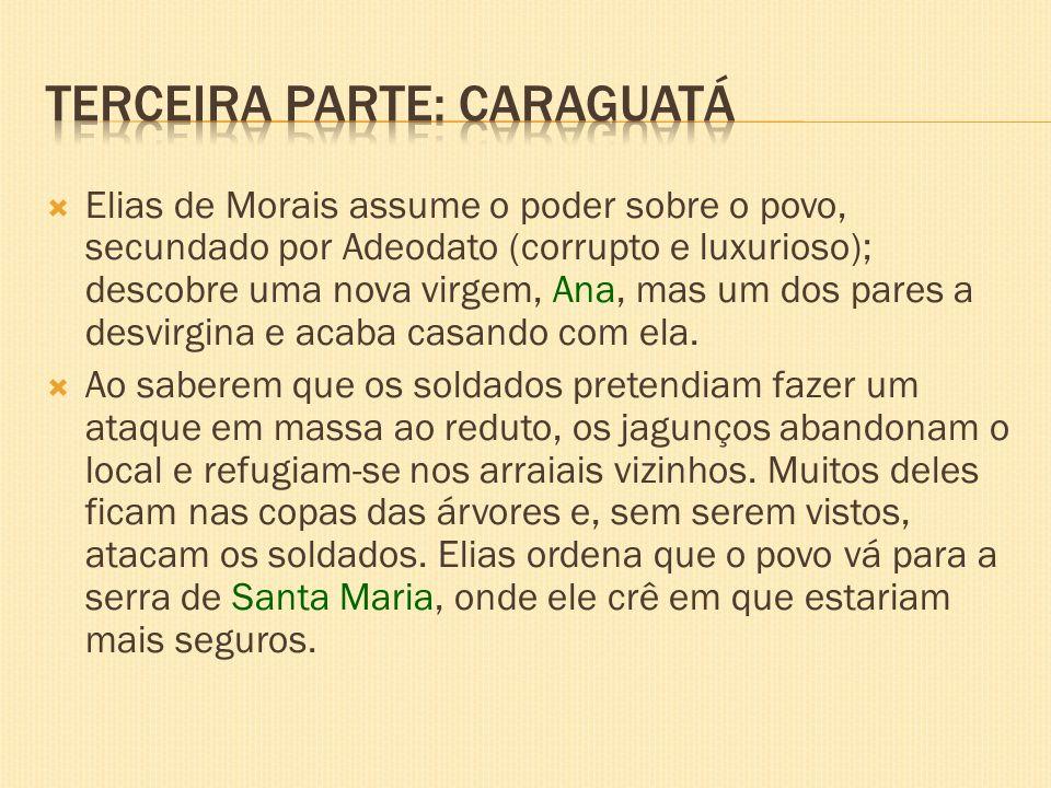 Terceira parte: Caraguatá