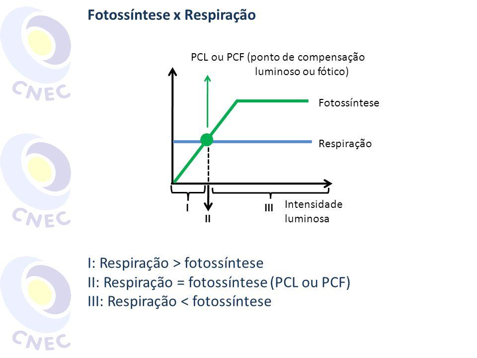 Fotossíntese x Respiração