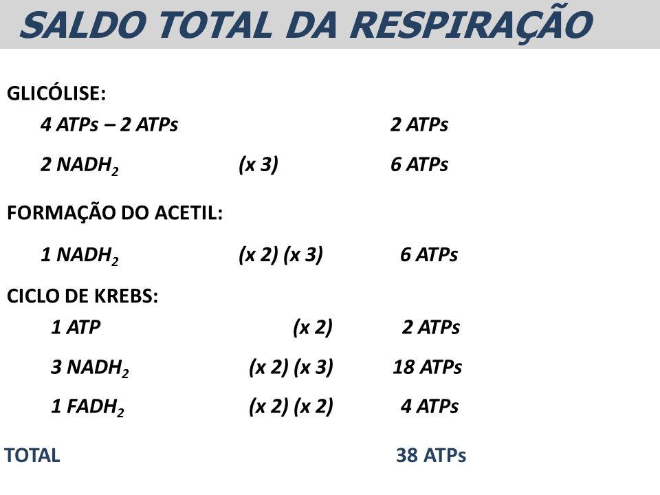 SALDO TOTAL DA RESPIRAÇÃO