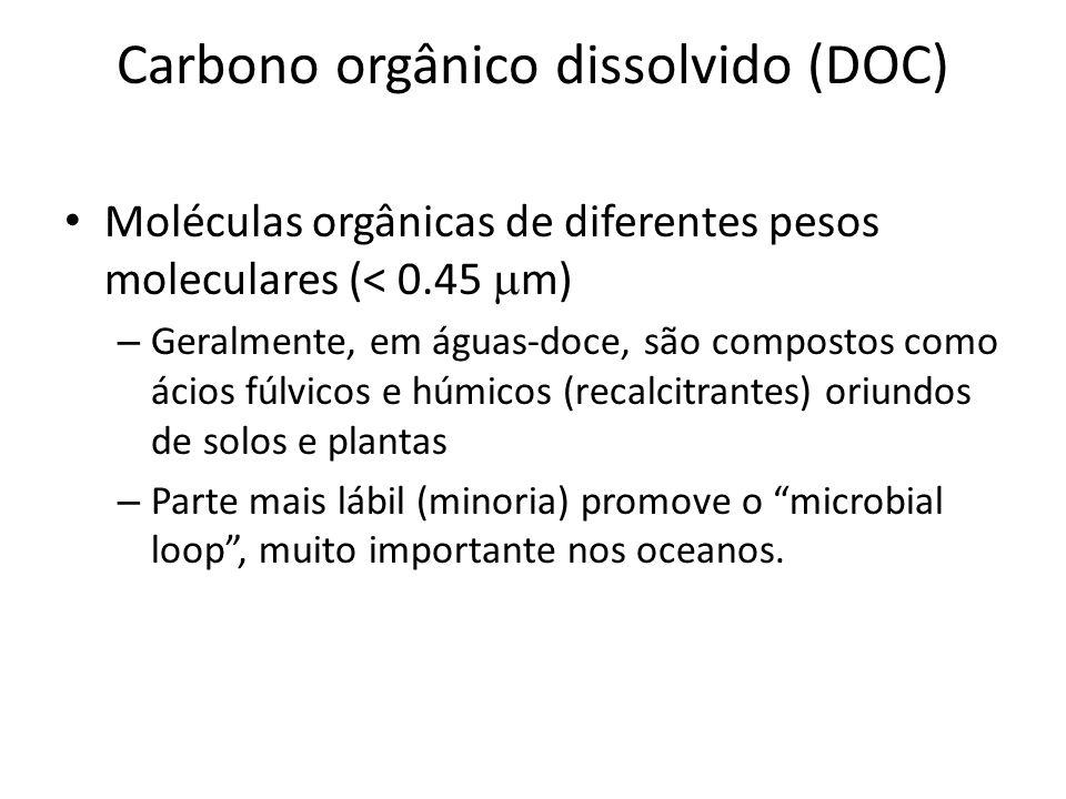 Carbono orgânico dissolvido (DOC)