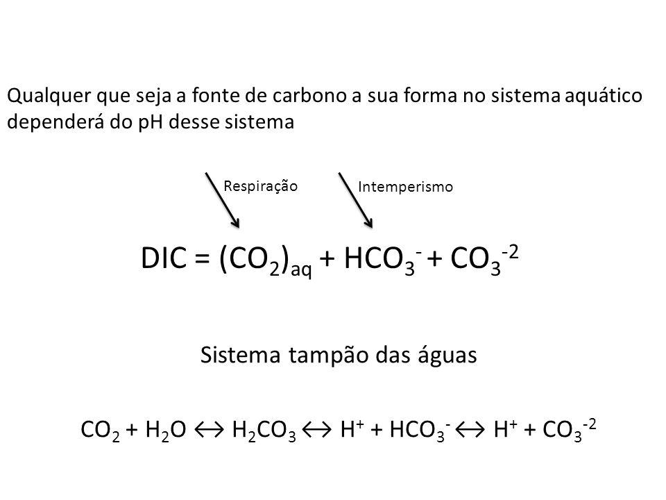 DIC = (CO2)aq + HCO3- + CO3-2 Sistema tampão das águas