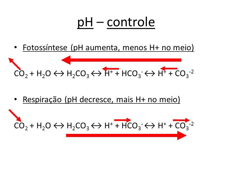 pH – controle Fotossíntese (pH aumenta, menos H+ no meio)