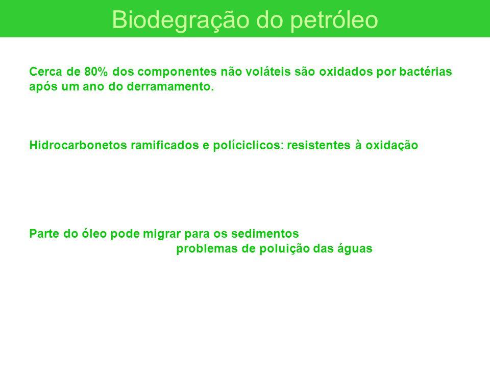 Biodegração do petróleo