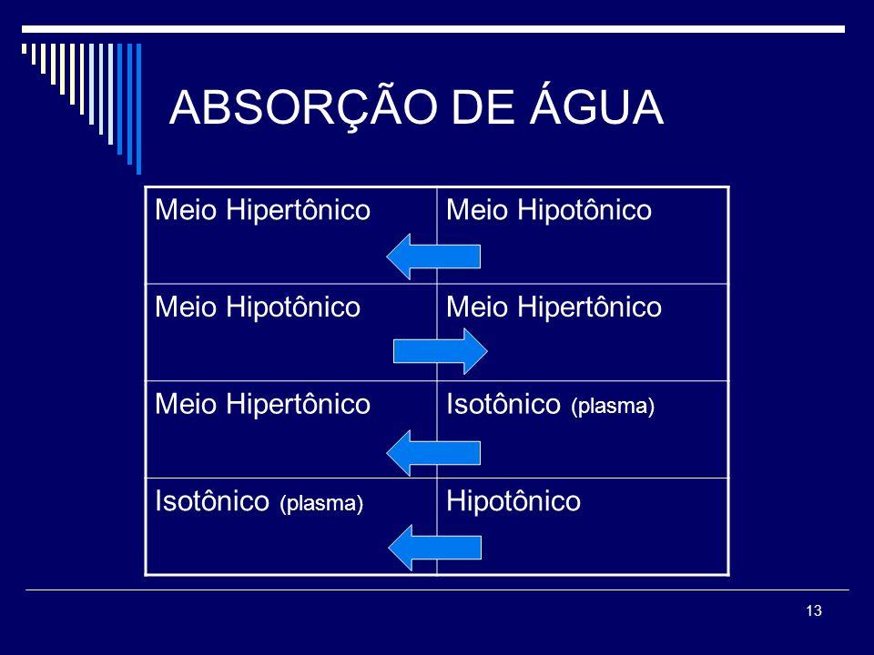 ABSORÇÃO DE ÁGUA Meio Hipertônico Meio Hipotônico Isotônico (plasma)