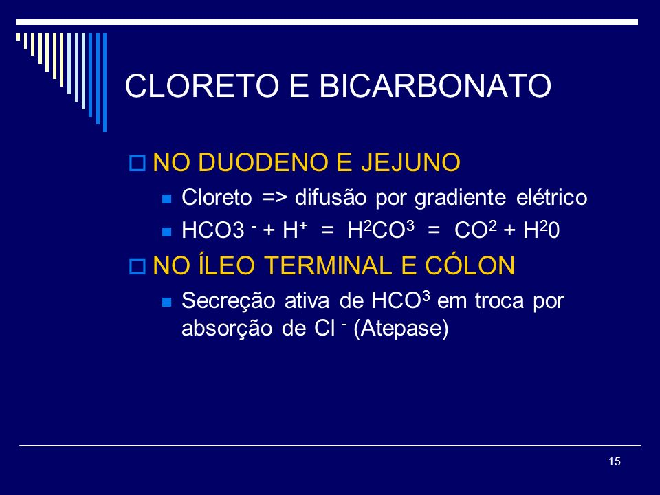 CLORETO E BICARBONATO NO DUODENO E JEJUNO NO ÍLEO TERMINAL E CÓLON