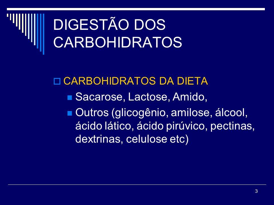 DIGESTÃO DOS CARBOHIDRATOS