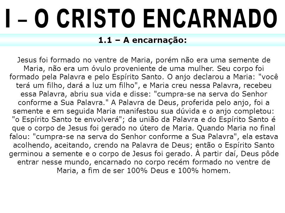 I – O CRISTO ENCARNADO 1.1 – A encarnação: