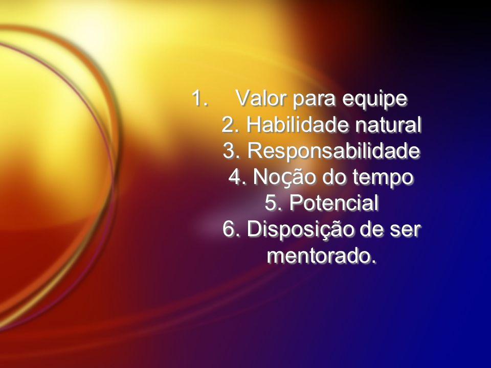 Valor para equipe 2. Habilidade natural 3. Responsabilidade 4