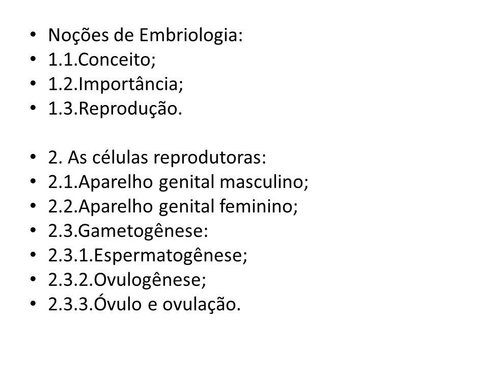 Noções de Embriologia:
