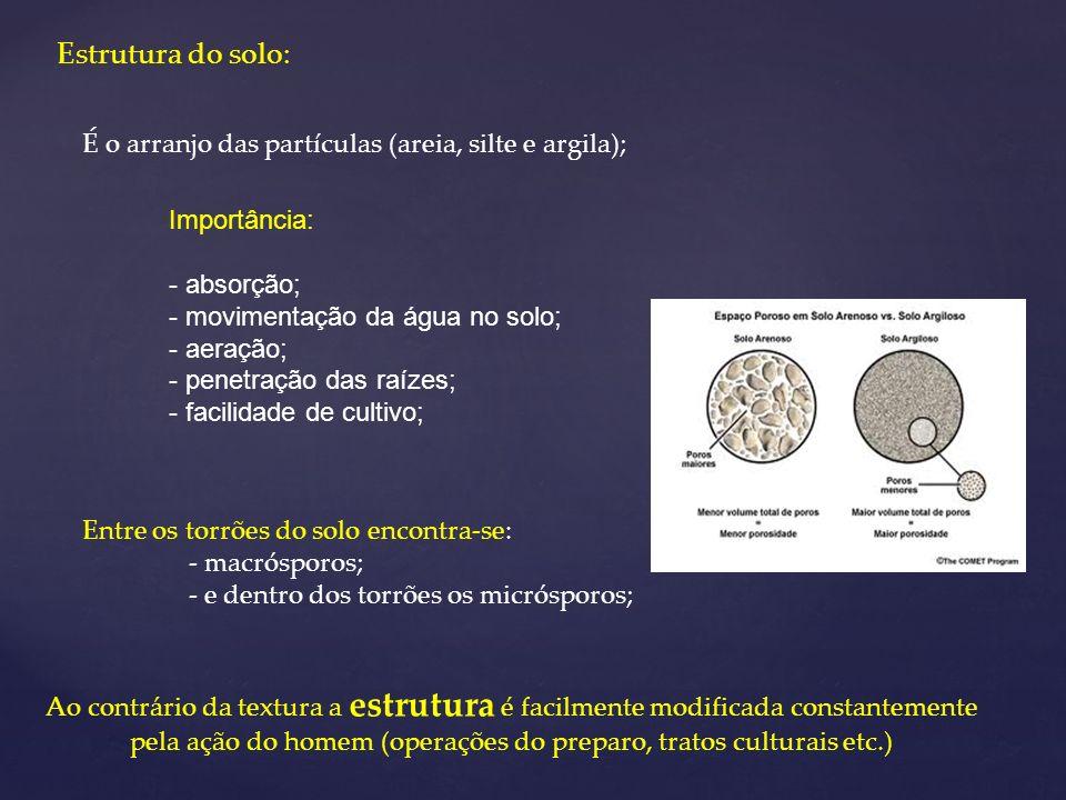 Estrutura do solo: É o arranjo das partículas (areia, silte e argila);