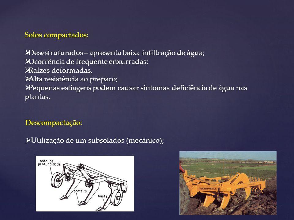 Solos compactados:Desestruturados – apresenta baixa infiltração de água; Ocorrência de frequente enxurradas;