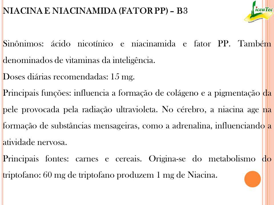 NIACINA E NIACINAMIDA (FATOR PP) – B3