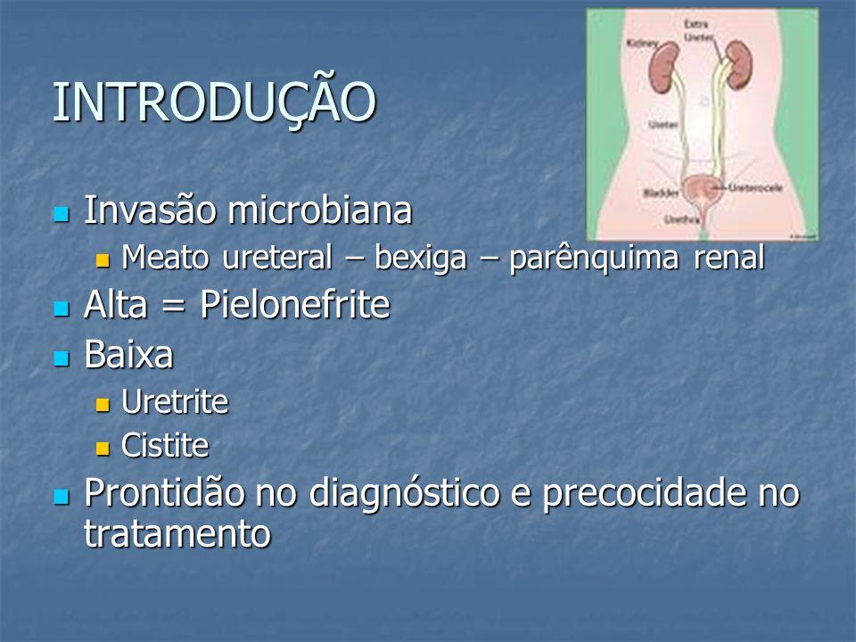 INTRODUÇÃO Invasão microbiana Alta = Pielonefrite Baixa