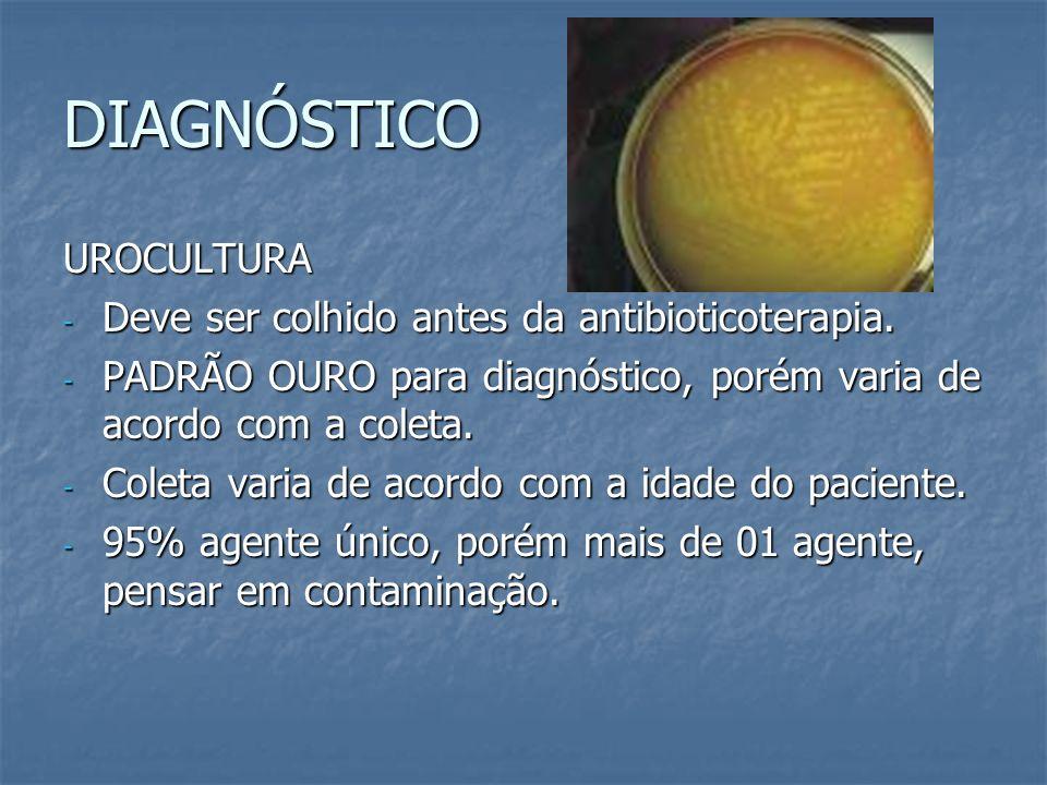 DIAGNÓSTICO UROCULTURA Deve ser colhido antes da antibioticoterapia.
