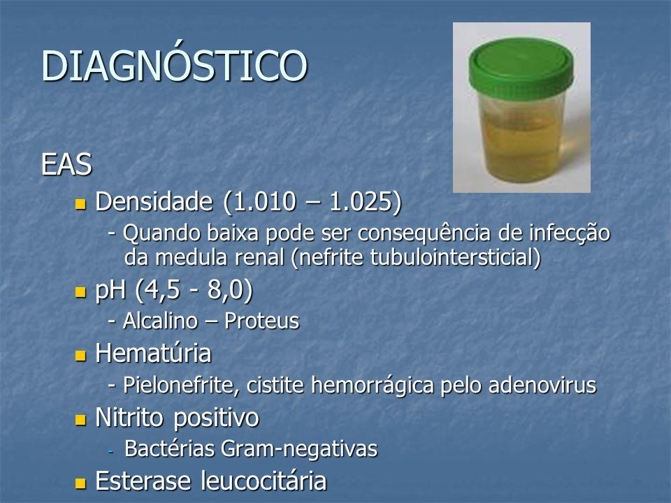 DIAGNÓSTICO EAS Densidade (1.010 – 1.025) pH (4,5 - 8,0) Hematúria