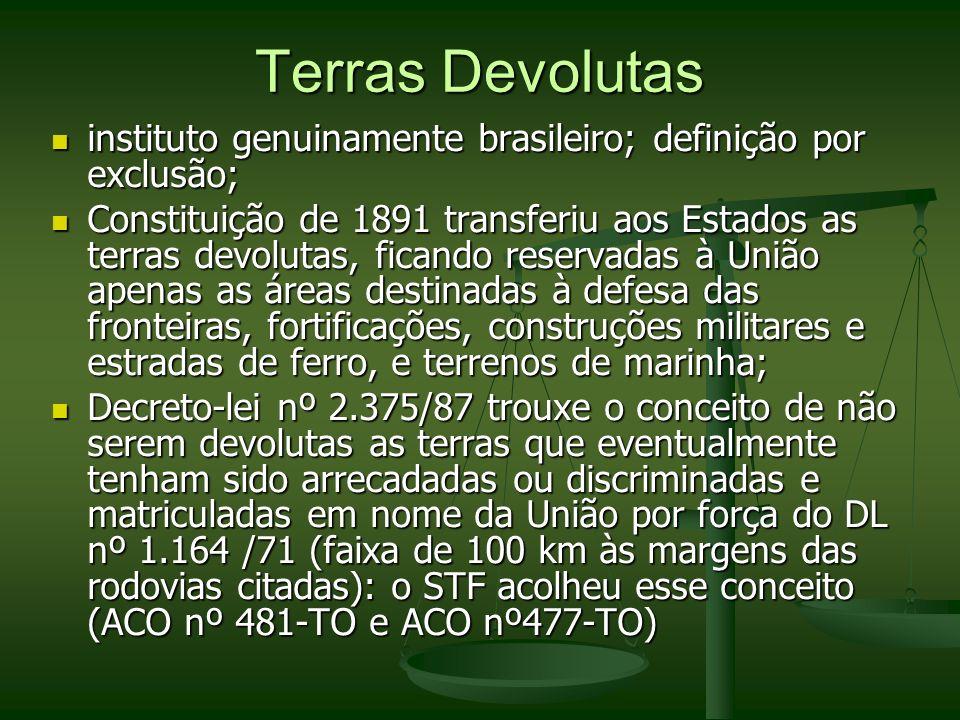 Terras Devolutas instituto genuinamente brasileiro; definição por exclusão;