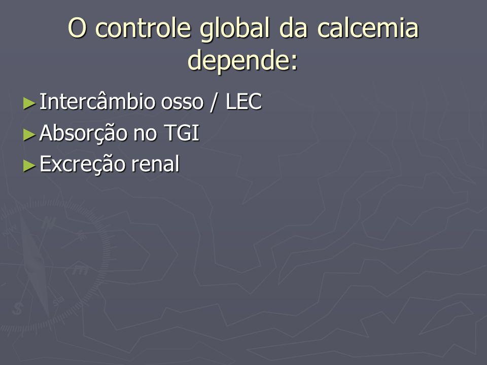 O controle global da calcemia depende: