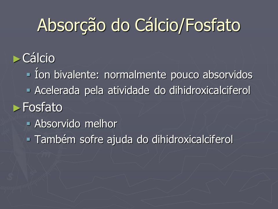 Absorção do Cálcio/Fosfato