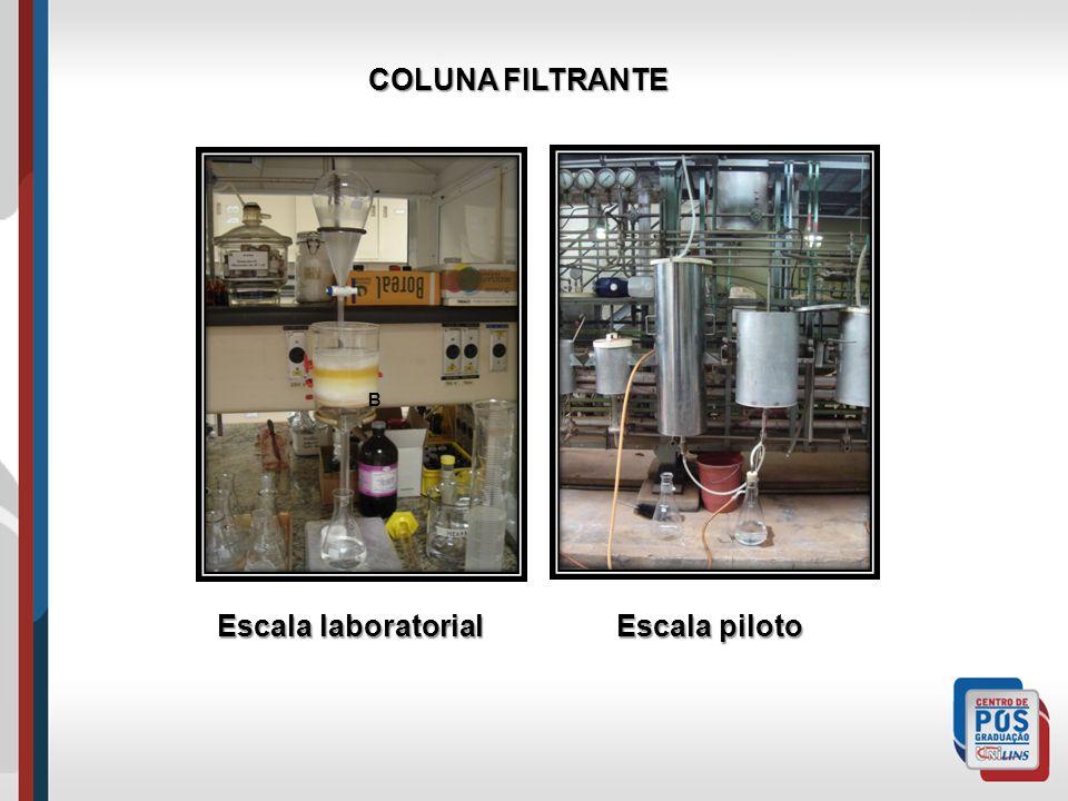 COLUNA FILTRANTE A B Escala laboratorial Escala piloto