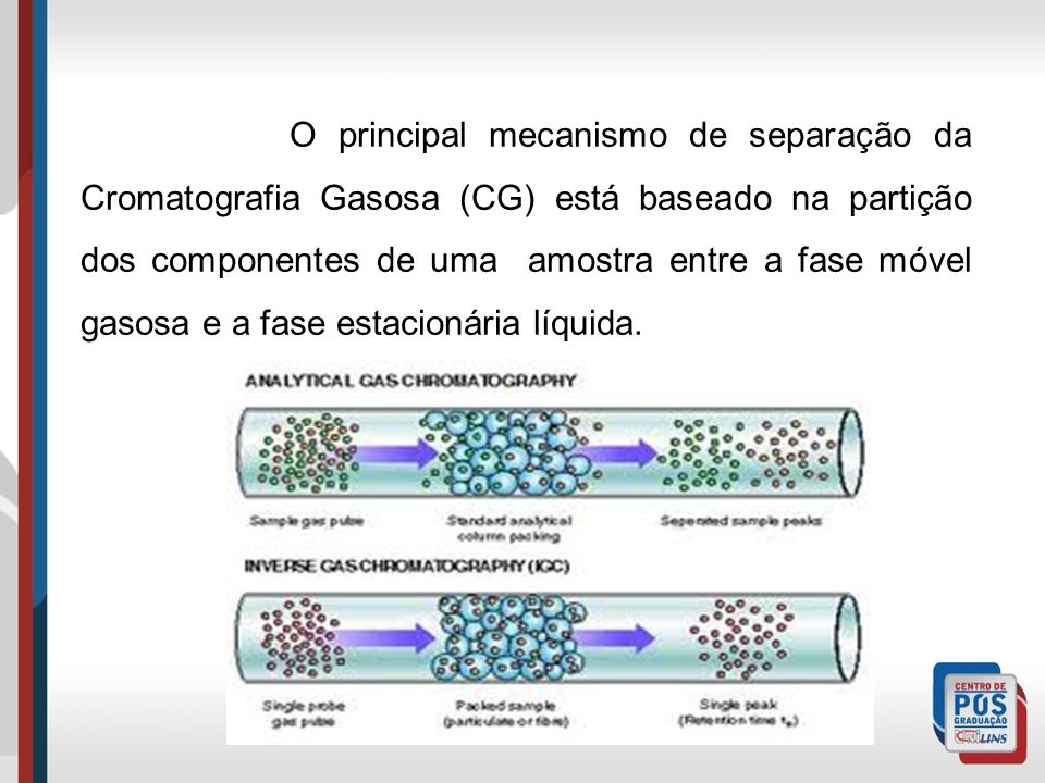 O principal mecanismo de separação da Cromatografia Gasosa (CG) está baseado na partição dos componentes de uma amostra entre a fase móvel gasosa e a fase estacionária líquida.