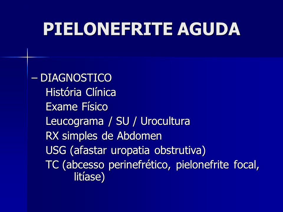 PIELONEFRITE AGUDA DIAGNOSTICO História Clínica Exame Físico