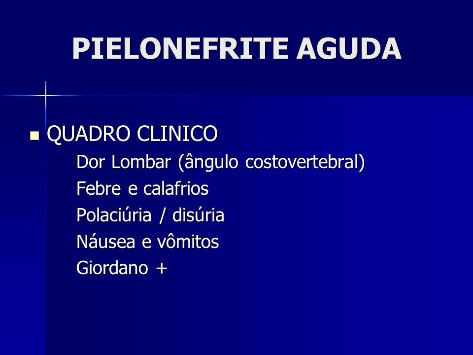 PIELONEFRITE AGUDA QUADRO CLINICO Dor Lombar (ângulo costovertebral)