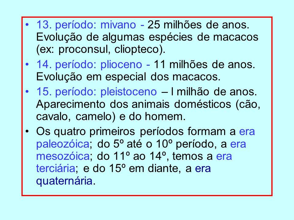 13. período: mivano - 25 milhões de anos