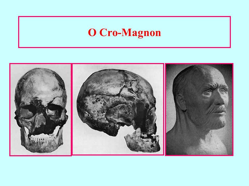 O Cro-Magnon