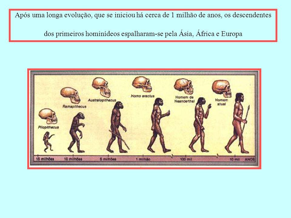 Após uma longa evolução, que se iniciou há cerca de 1 milhão de anos, os descendentes dos primeiros hominídeos espalharam-se pela Ásia, África e Europa