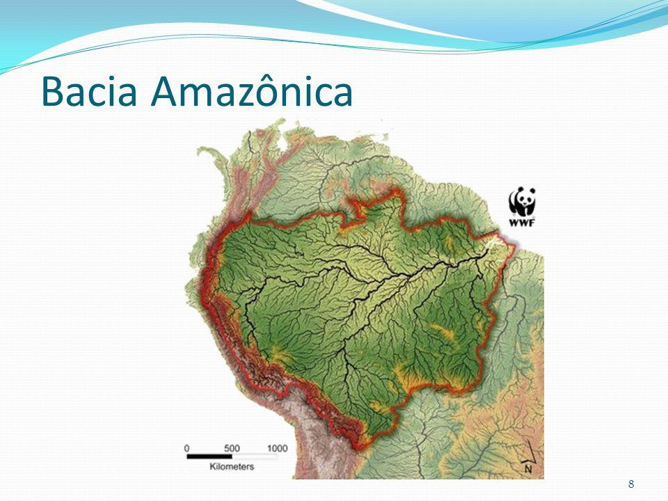 Bacia Amazônica