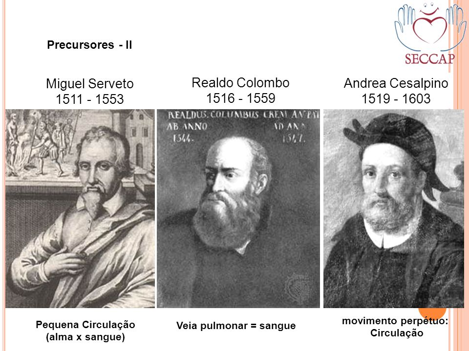Miguel Serveto Realdo Colombo Andrea Cesalpino 1511 - 1553 1516 - 1559