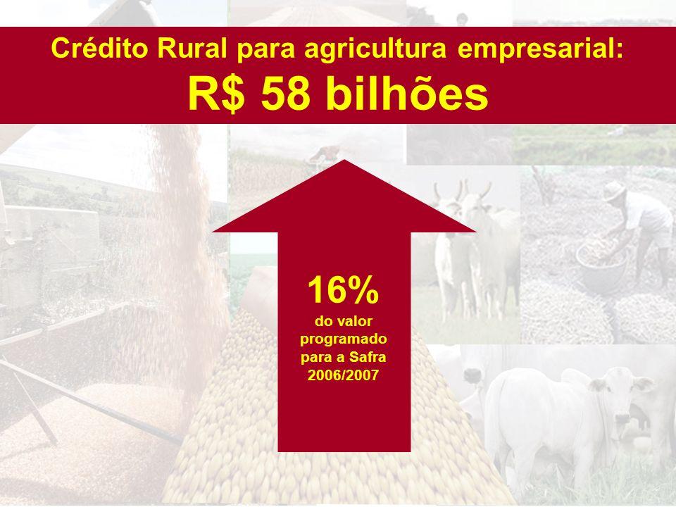 16% do valor programado para a Safra 2006/2007