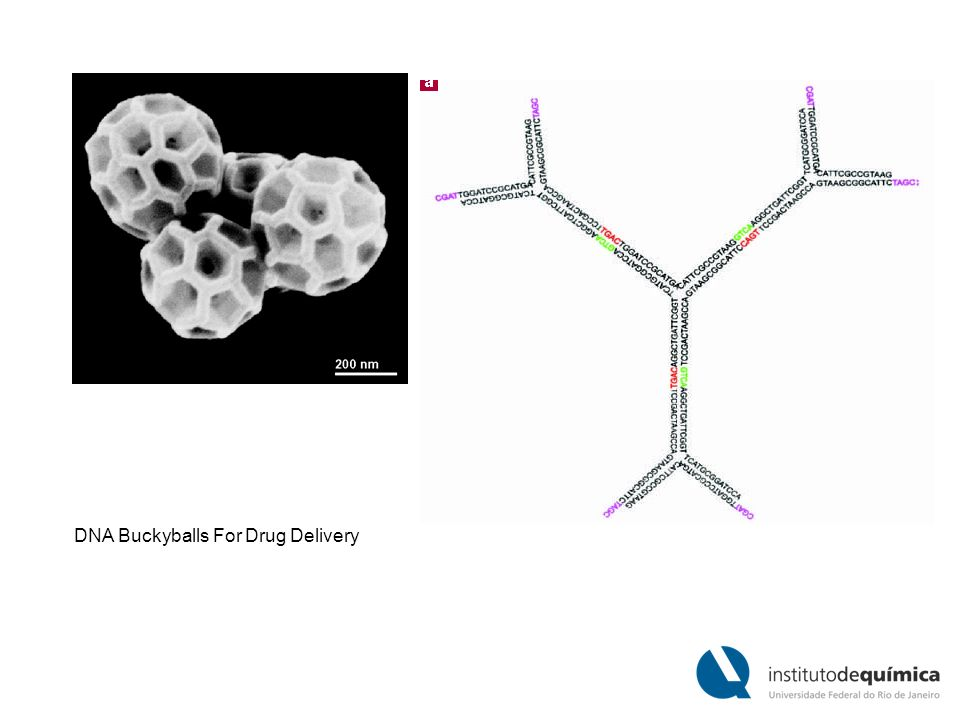 DNA Buckyballs For Drug Delivery