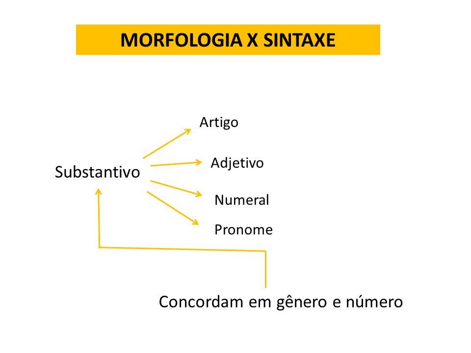 MORFOLOGIA X SINTAXE Substantivo Concordam em gênero e número Artigo