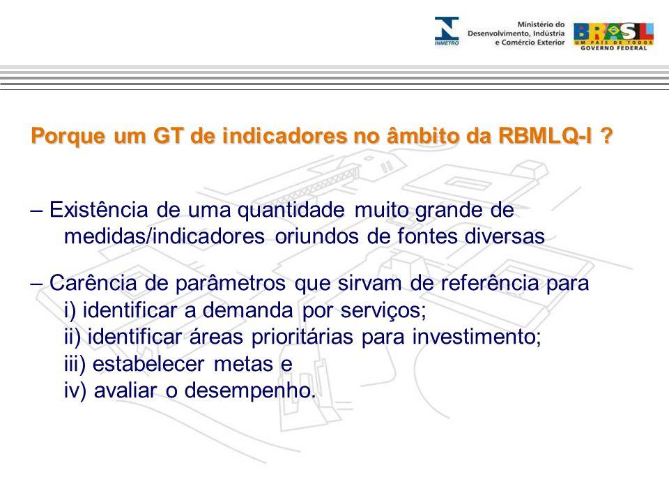 Porque um GT de indicadores no âmbito da RBMLQ-I