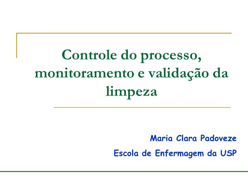 Controle do processo, monitoramento e validação da limpeza