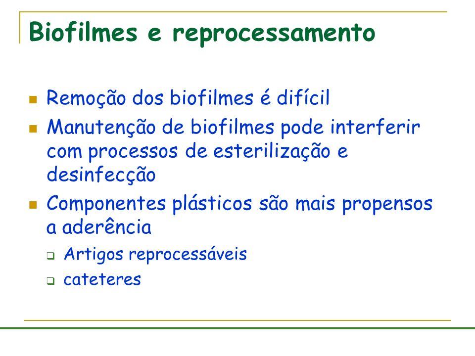 Biofilmes e reprocessamento