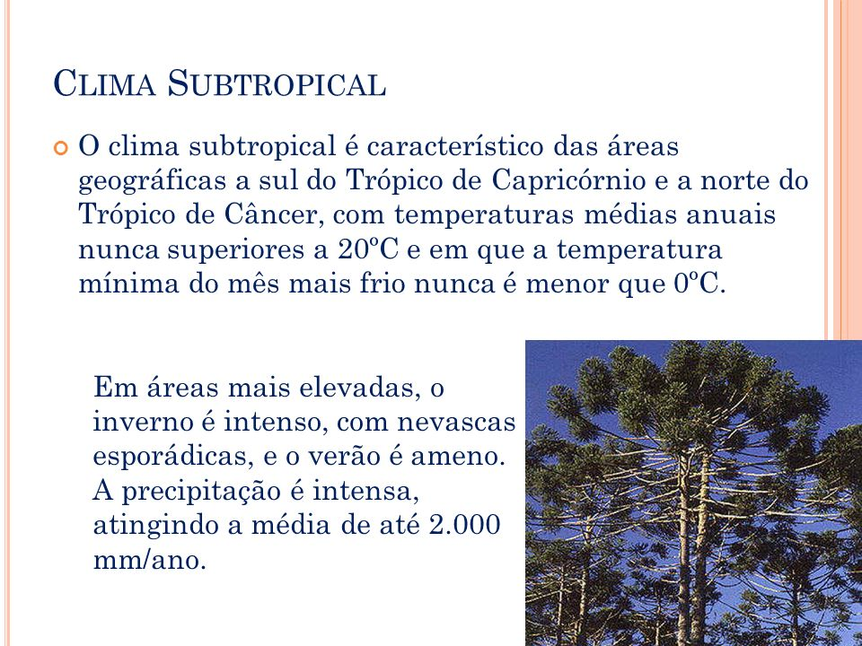 Clima Subtropical