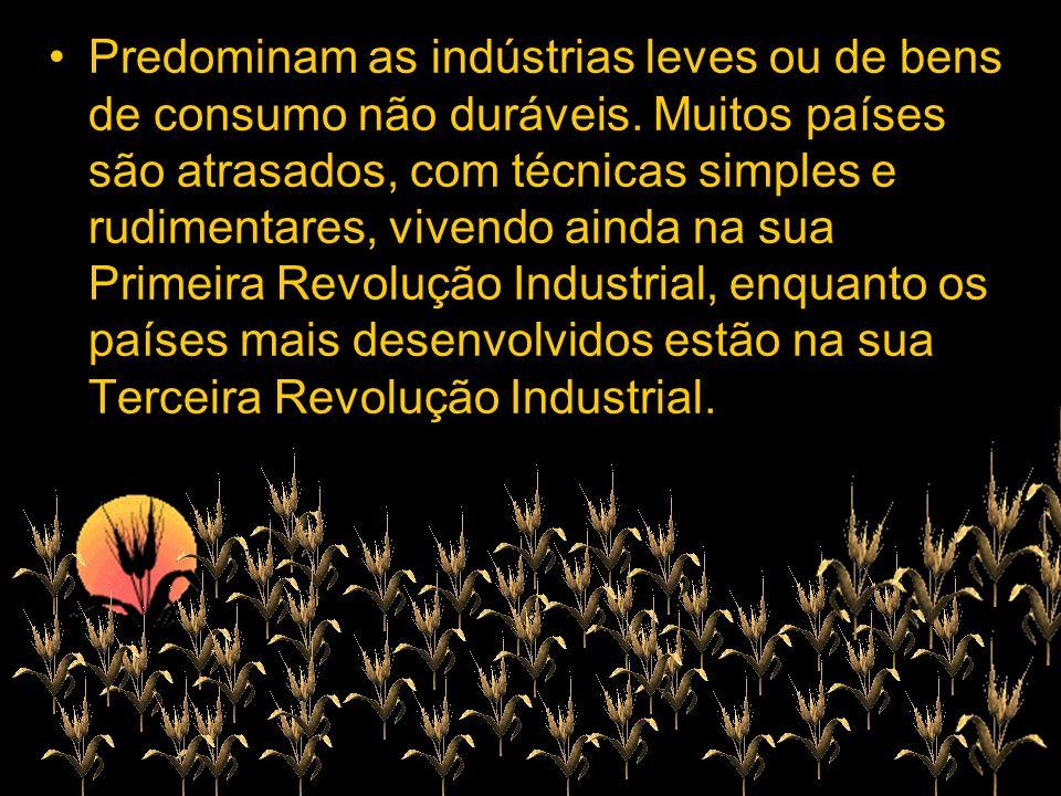 Predominam as indústrias leves ou de bens de consumo não duráveis