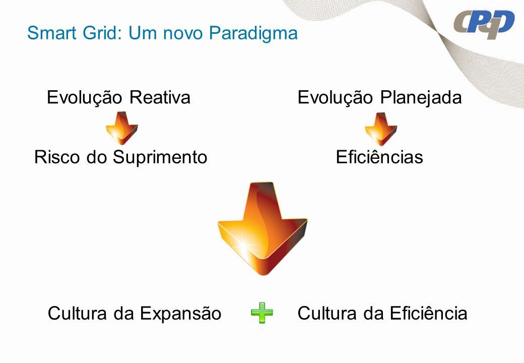 Smart Grid: Um novo Paradigma