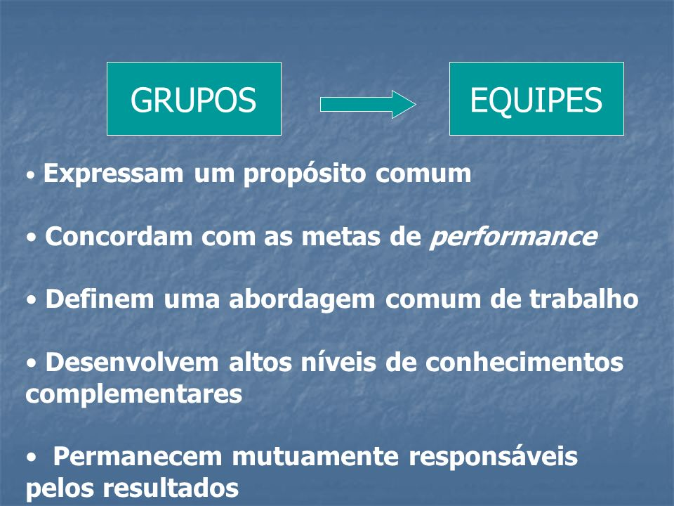GRUPOS EQUIPES Concordam com as metas de performance