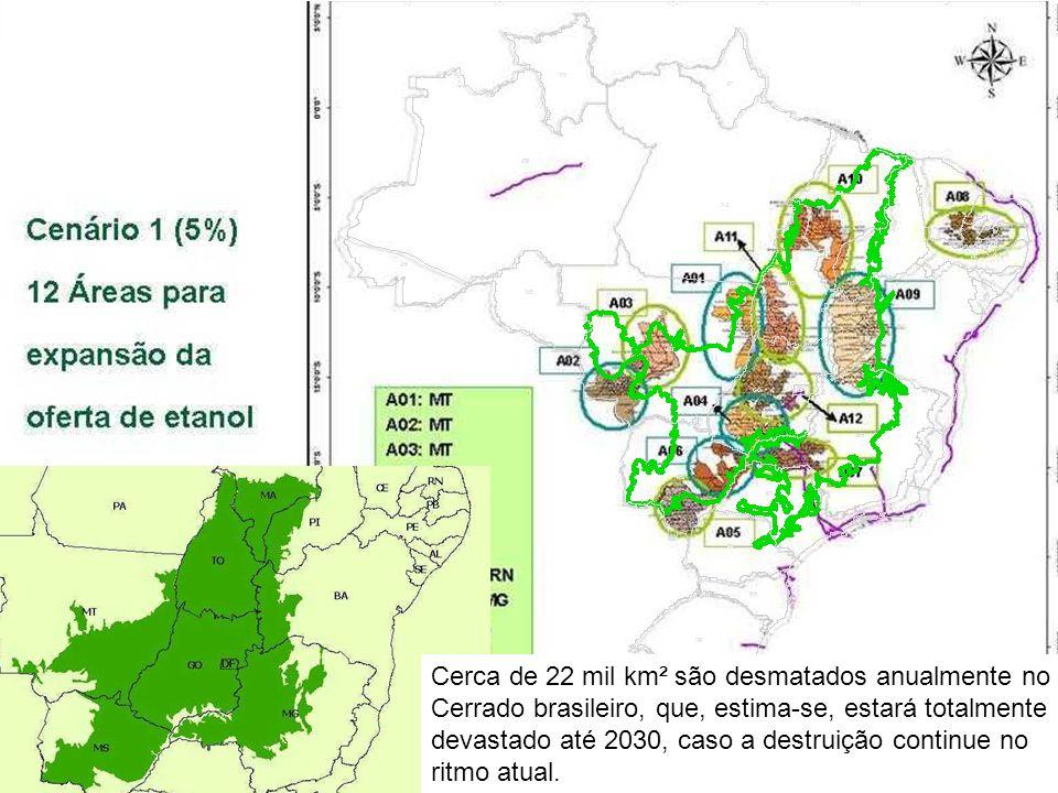 Direitos Humanos no Brasil 2008