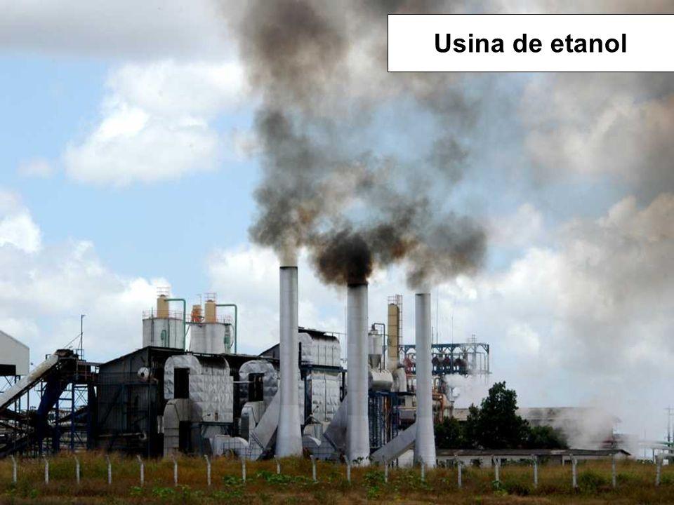 Usina de etanol