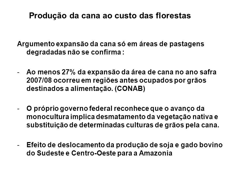 Produção da cana ao custo das florestas