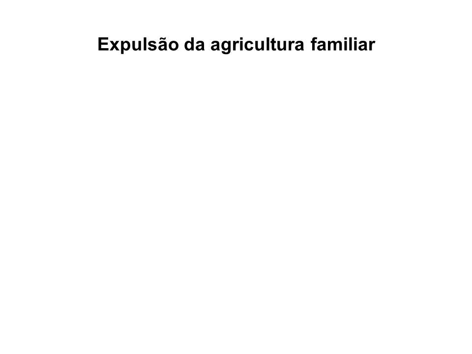 Expulsão da agricultura familiar