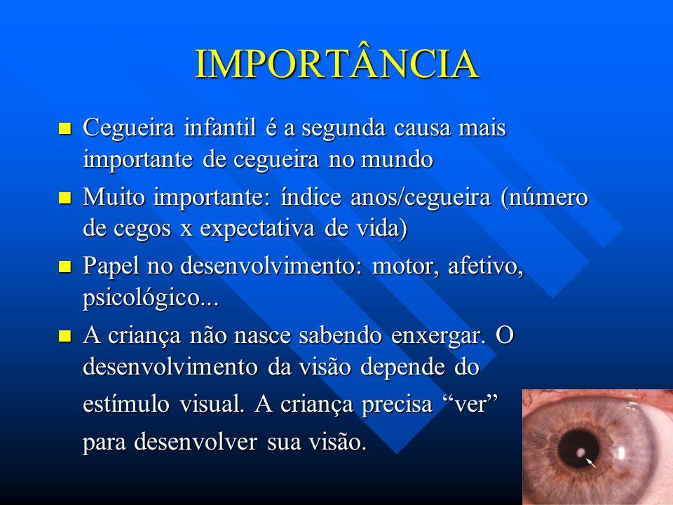 IMPORTÂNCIACegueira infantil é a segunda causa mais importante de cegueira no mundo.