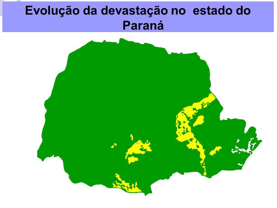 Evolução da devastação no estado do Paraná
